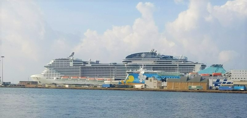 large cruise ship docked in port
