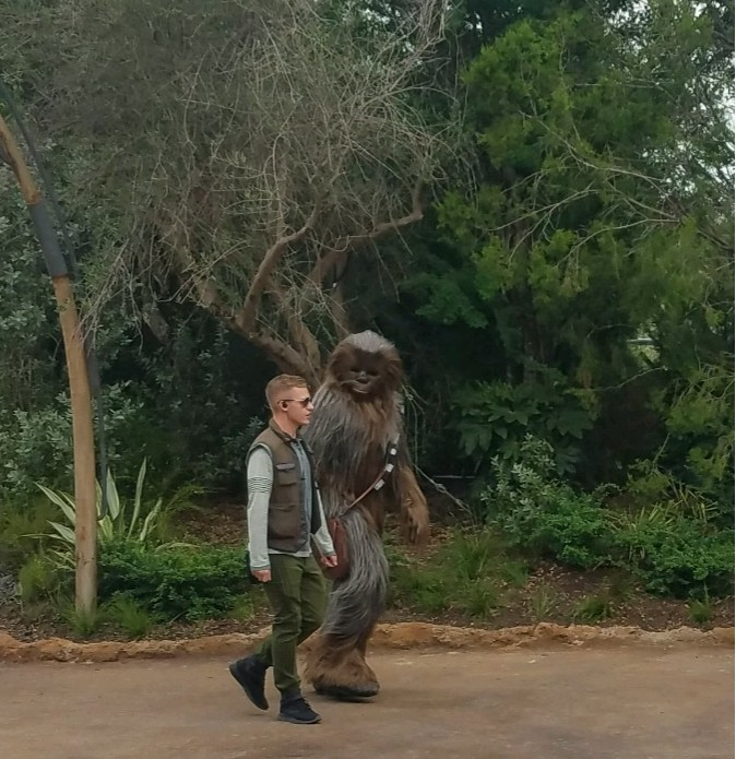 DISNEYWORLD GALAXY'S EDGE – What not to miss in the land of Star Wars 23 20191105 133933 2