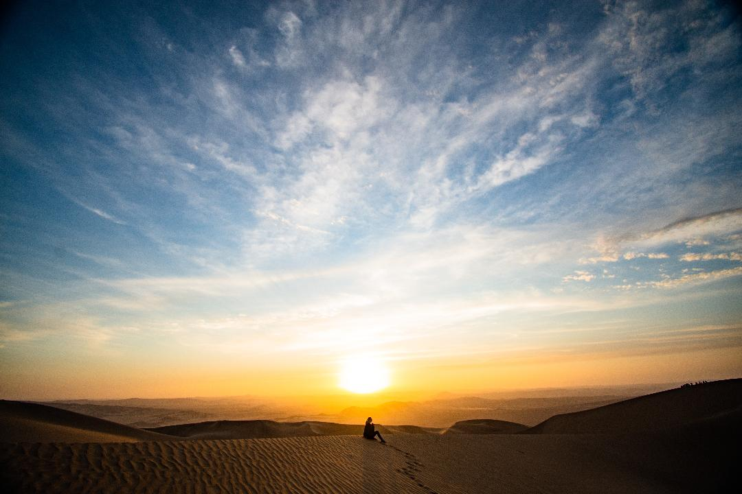 Day Trip from Lima - Paracas and Huacachina