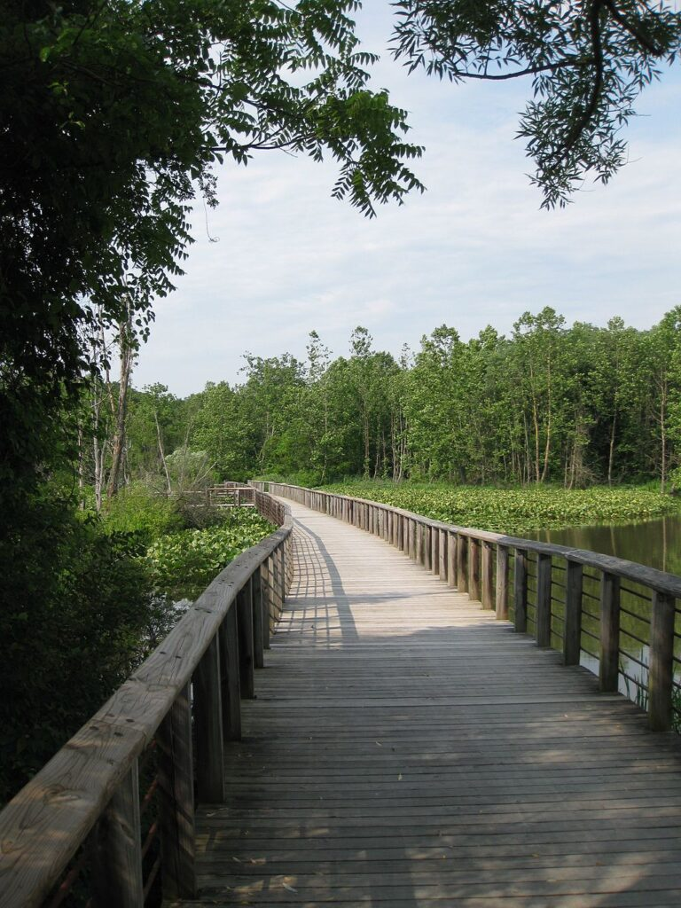 trail over beaver marsh at cuyahoga valley national park