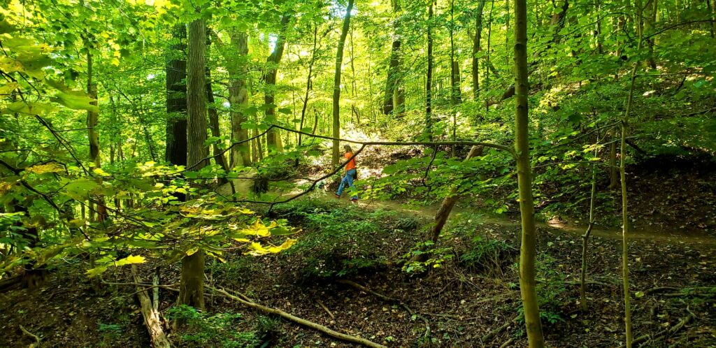 lady walking deep in the woods in cuyahoga valley national park