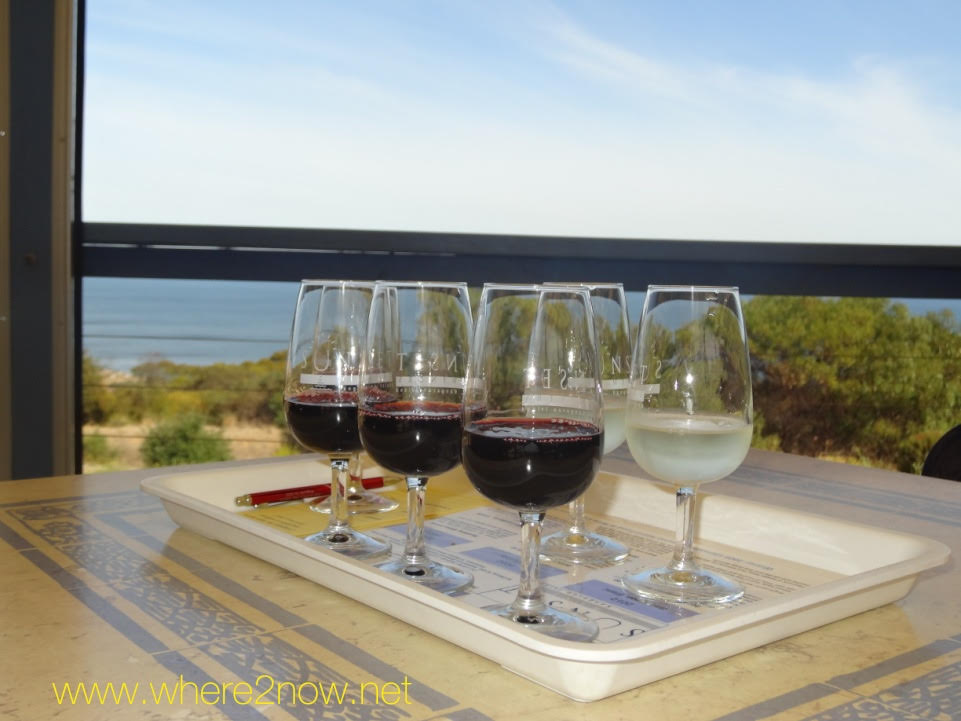 wine glasses on a tray in front of a window overlooking the water for a wine tour