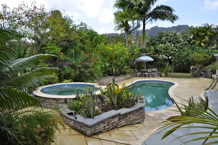 view of pool and lush garden in tropical haven guest house in trinidad and tobago