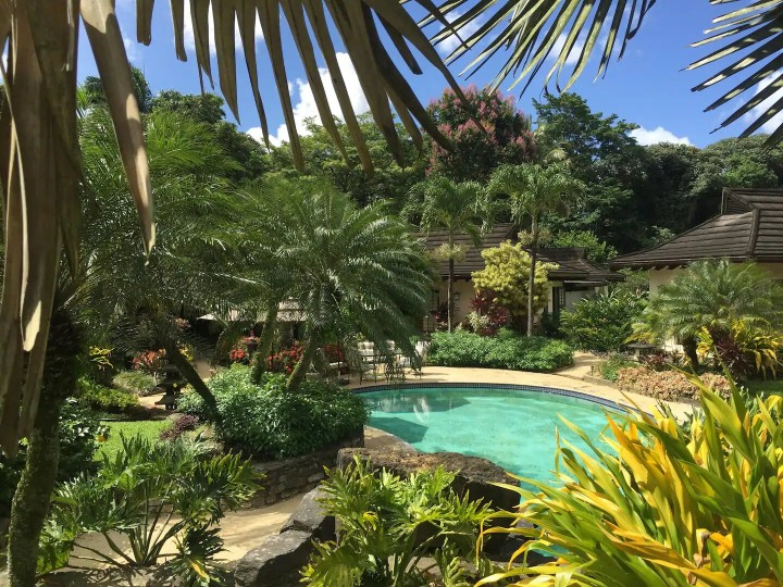 pool and garden at guest house in Trinidad and tobago