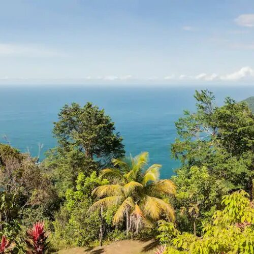 great view from the best hotels in Trinidad and Tobago