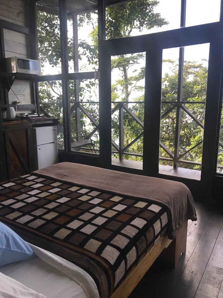 view of the treehouse room in trinidad and tobago