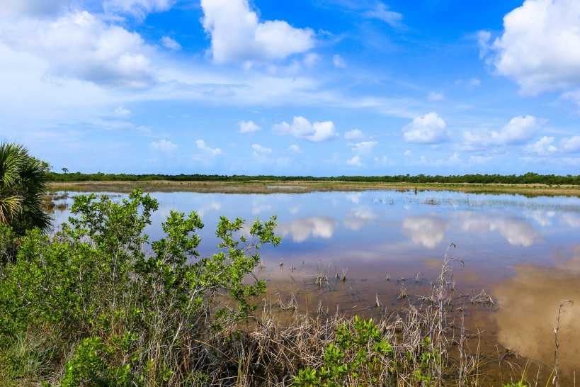 everglades view during a relaxing US vacation for empty-nesters