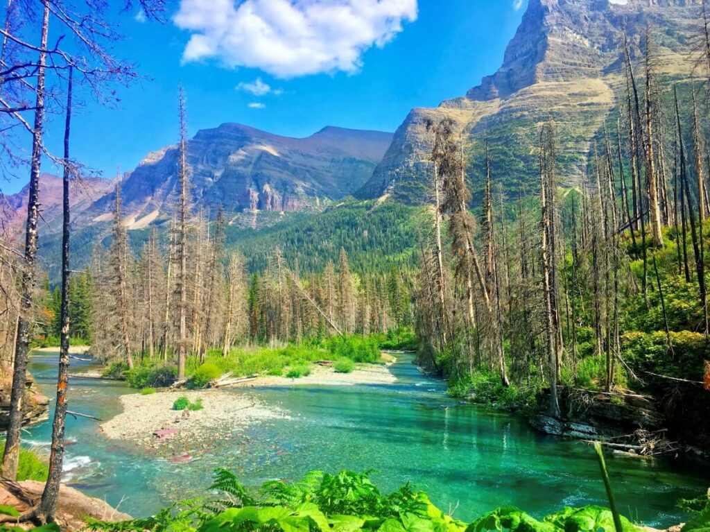 view of lake and forest at Glacier National Park on a US empty nest vacation