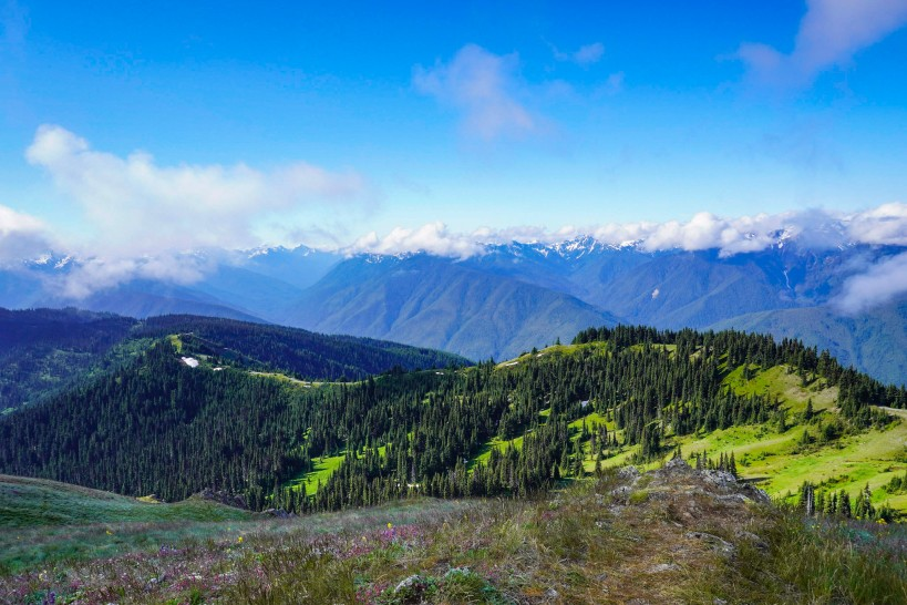 landscape and mountains at olympic-national-park US Vacation Idea for Empty Nesters
