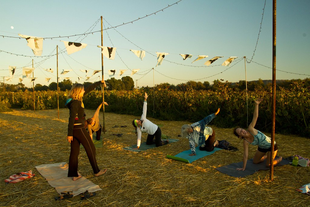people doing yoga in front of a sunflower field