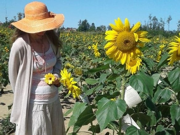 admiring the sunflowers at maria's field of hope in avon ohio