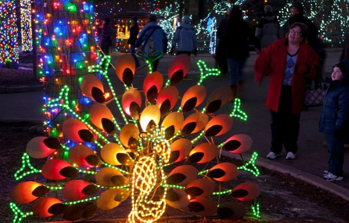mom and child looking at holiday lights at denver zoo lights in wintertime
