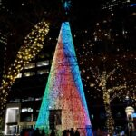 holiday decorations in denver in winter - mile high tree at 16th street mall in denver